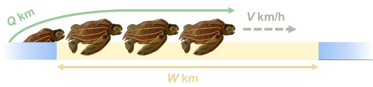 Turtle_Beach_Queue
